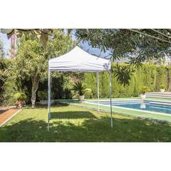 Carpa Plegable 2x2 sin...